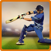 CricAstics 3D Multiplayer Cricket Game icon