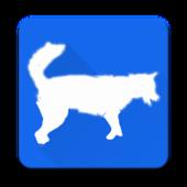 Husky Run Lite icon