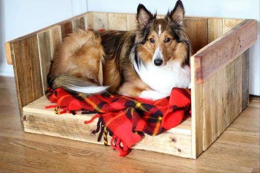 DIY Dog Bed Design Ideas screenshot 10