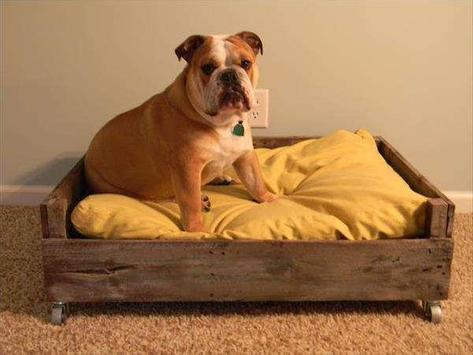 DIY Dog Bed Design Ideas screenshot 1