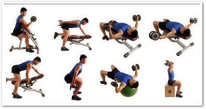 DIY Fitness Training Trends apk screenshot