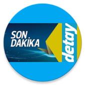 DETAY icon