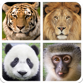 Zoo Animal Sounds And Guess icon