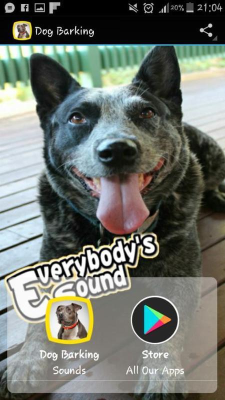 Sound fx >> creatures >> pets: dog bark (single) flash kit.