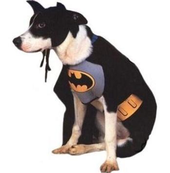 Dog Costumes screenshot 4