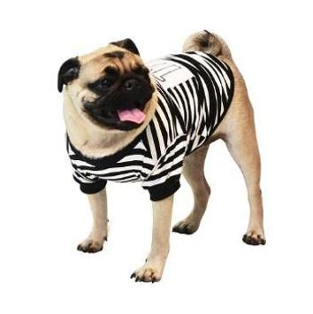 Dog Costumes screenshot 5