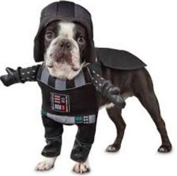 Dog Costumes screenshot 6