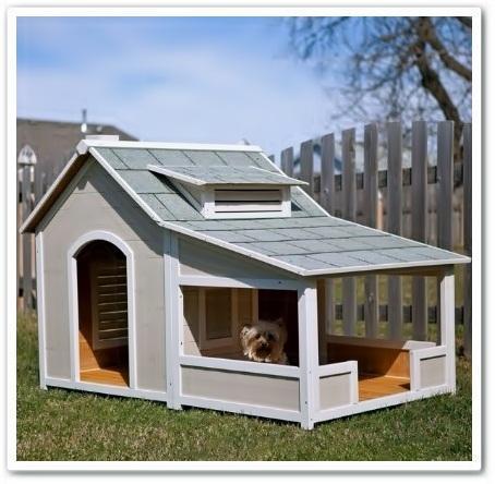 Dog House Design Popular for Android - APK Download