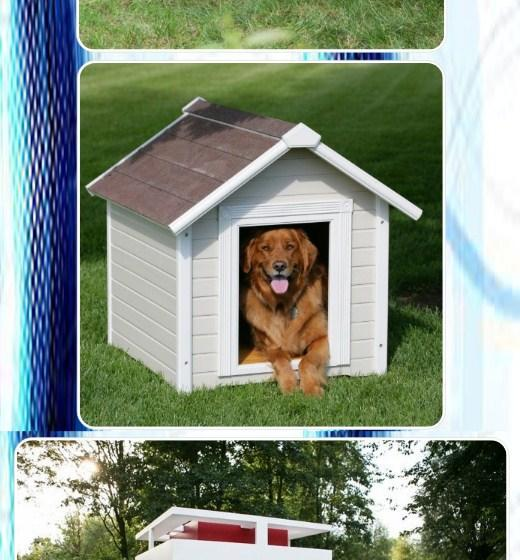 Dog House for Android - APK Download