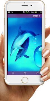 Dolphin Wallpaper screenshot 3