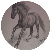 How To Draw Horse icon