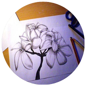 Drawing Flowers Tutorials icon
