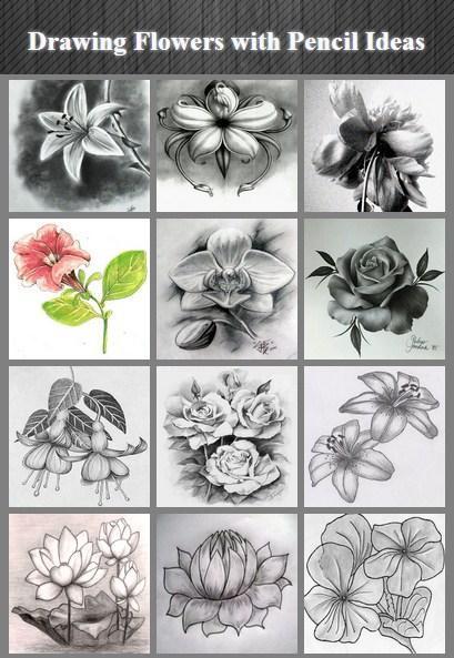 Menggambar Bunga Dengan Pensil Ideas For Android Apk Download