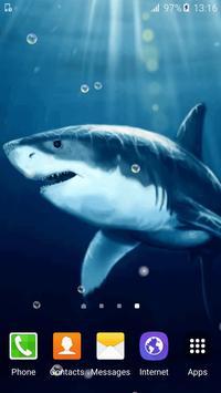 Shark Live Wallpaper poster