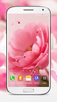 Pink Roses Live Wallpaper poster