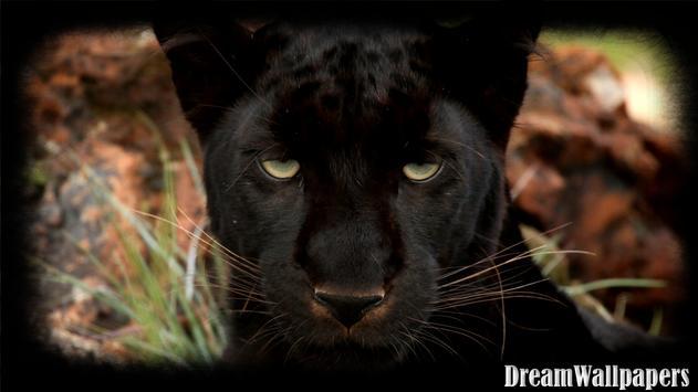 Black Panther Wallpaper screenshot 3