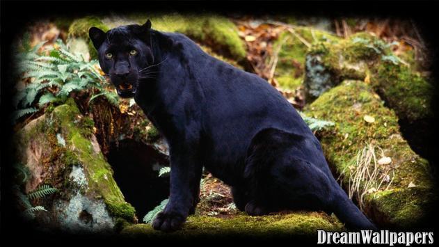 Black Panther Wallpaper screenshot 1