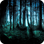 Dark Forest Live Wallpaper icon