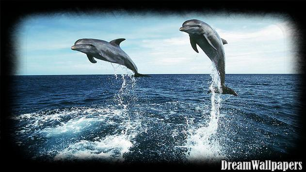 Dolphins Wallpaper apk screenshot
