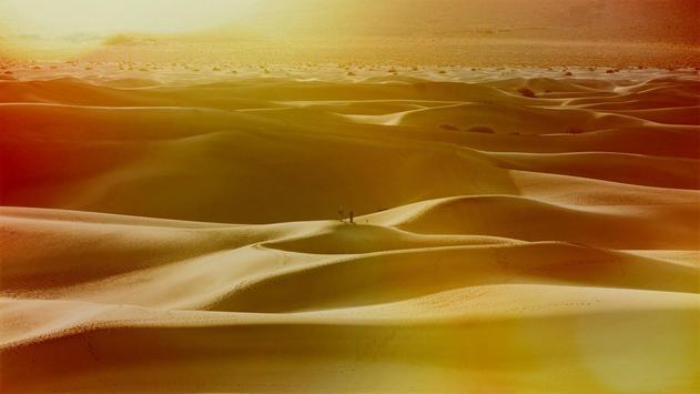 Dunes Live Wallpaper apk screenshot