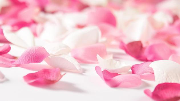 Rose Petals Live Wallpaper apk screenshot