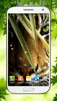 Tiger Live Wallpaper HD screenshot 6