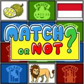 Match or Not : Brain Games icon