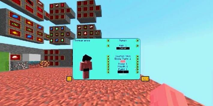 Dragon Block C Mod for Minecraft poster