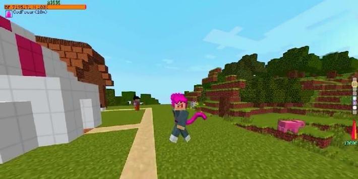 Dragon Block C Mod for Minecraft screenshot 2