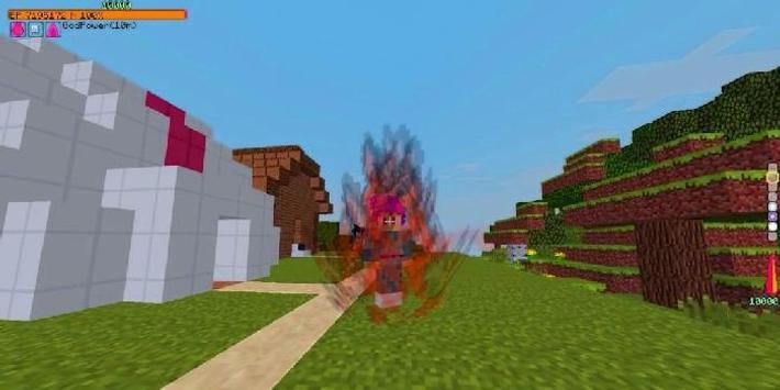 Dragon Block C Mod for Minecraft screenshot 3
