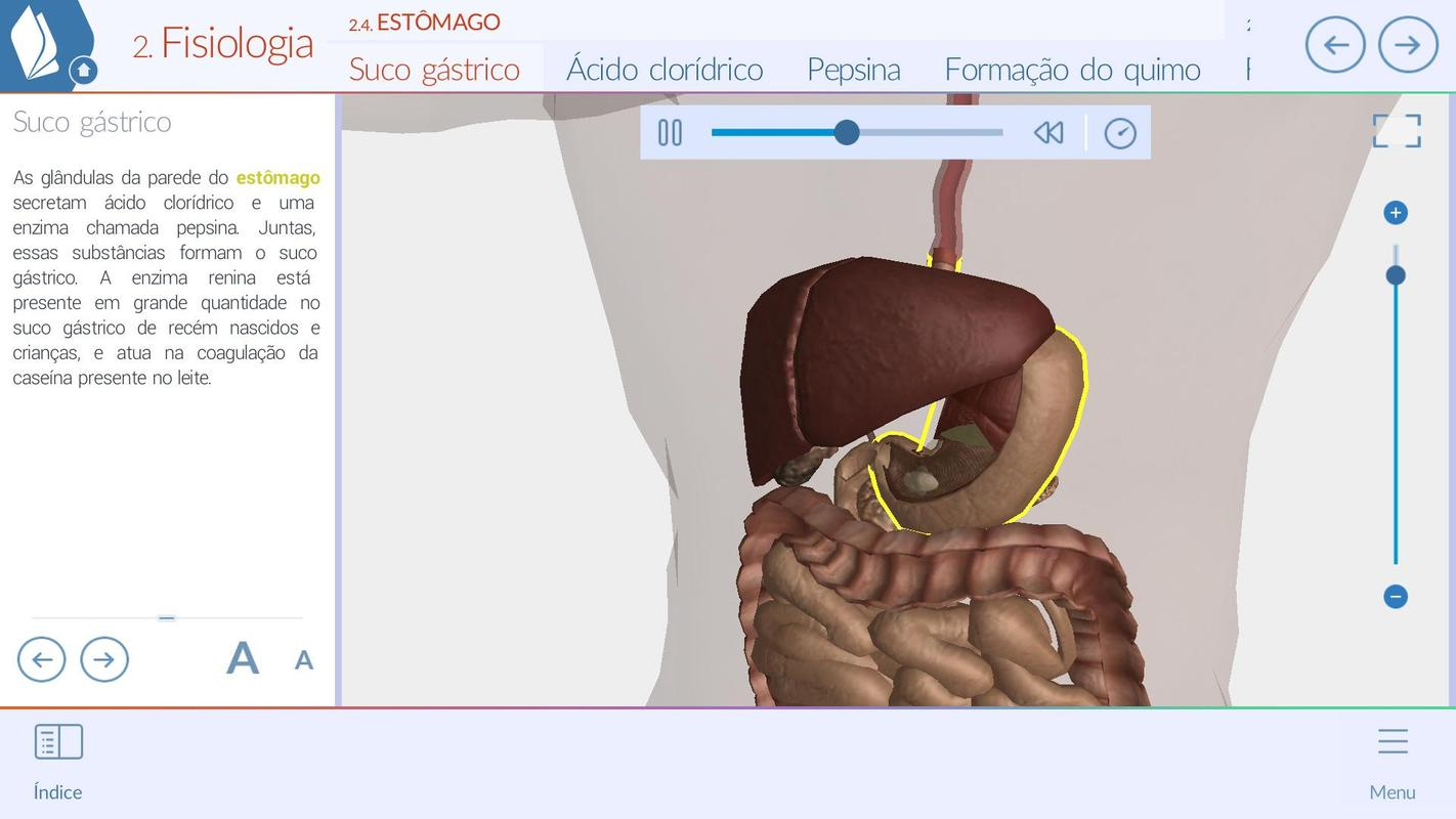 Sistemas do Corpo Humano 3D Descarga APK - Gratis Educación ...