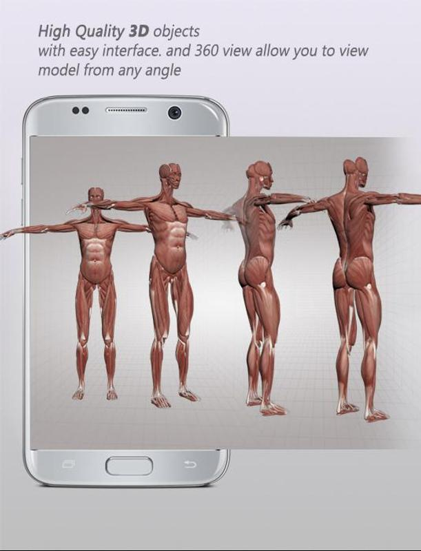 Human Anatomy 3d Male Body Structure For Android Apk Download