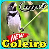 Canto Coleiro Tui Tui Top Mp3 icon