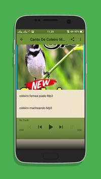 Canto Coleiro Tui Tui Top Mp3 screenshot 2