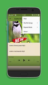 Canto Coleiro Tui Tui Top Mp3 screenshot 5