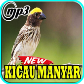 Kicau Burung Manyar Top Mp3 icon