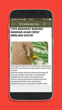 Kicau Burung Manyar Top Mp3 screenshot 4