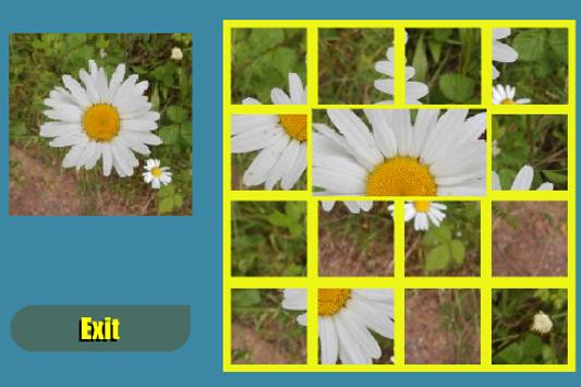 Flower Shuffle poster