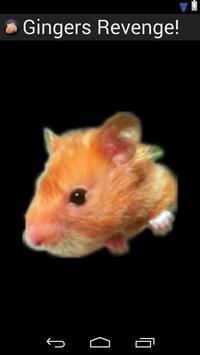 Farting Hamster - Lite poster