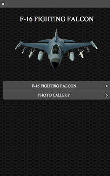 F-16 Fighting Falcon FREE poster