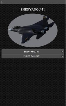 Shenyang J-31 FREE poster