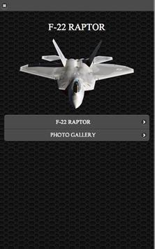 F-22 Stealth Fighter FREE poster