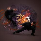 Martial Arts HD Live Wallpaper icon