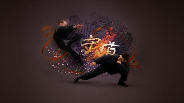 Martial Arts HD Live Wallpaper apk screenshot