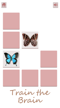 Butterfly Memory - Zen poster