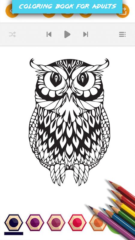 Burung Hantu Buku Mewarnai For Android Apk Download
