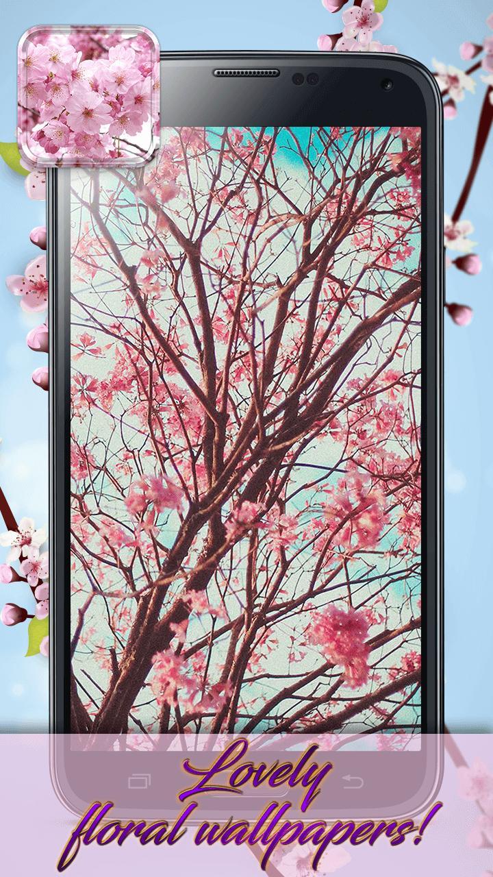 Bunga Sakura Tema Dan Wallpaper Hidup For Android APK Download