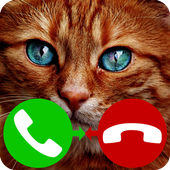fake call cat game icon