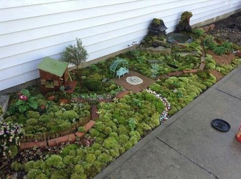 Fairy Garden Ideas screenshot 9