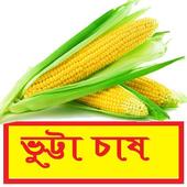 সঠিকভাবে ভুট্টা চাষ পদ্ধতি ~ Corn Cultivation icon